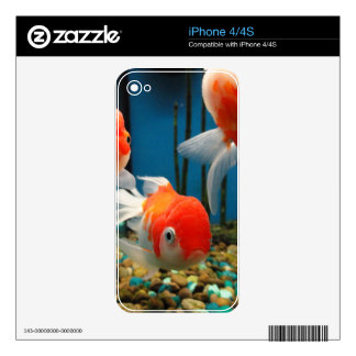 Van los pescados calcomanía para iPhone 4S