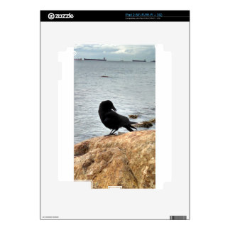Vancouver Crow Decals For iPad 2