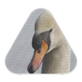 Vancouver, parque de Stanley, cisne mudo (olor del Altavoz