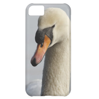 Vancouver, parque de Stanley, cisne mudo (olor del Funda Para iPhone 5C