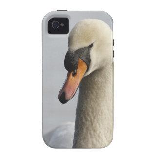 Vancouver, parque de Stanley, cisne mudo (olor del iPhone 4/4S Carcasas