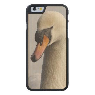 Vancouver, parque de Stanley, cisne mudo (olor del Funda De iPhone 6 Carved® Slim De Arce