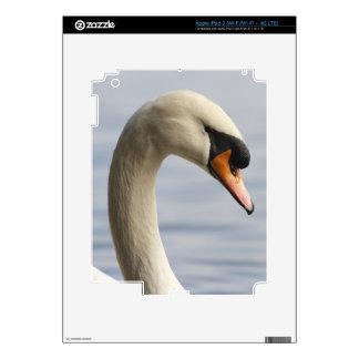 Vancouver, parque de Stanley, cisne mudo (olor del iPad 3 Skins