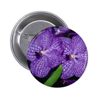 Vanda flowers pin