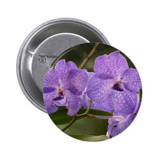 Vanda Orchid Pinback Button
