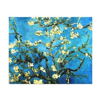 VanGogh Almond Tree Blossoms Canvas