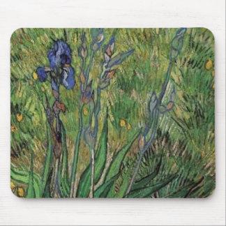 Vangogh The Iris Vintage Post impressionist Mouse Pad