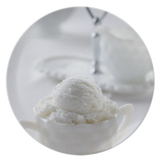 Vanilla ice cream in a white environment melamine plate