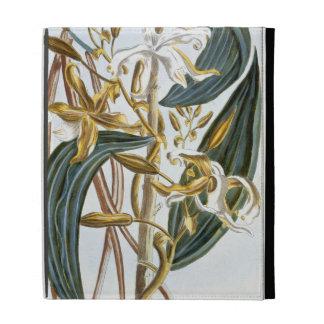 Vanilla pods, plate 65, from 'Collection Precieuse iPad Folio Case