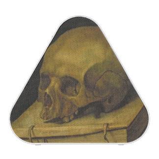 Vanitas, c.1644 (oil on canvas) speaker