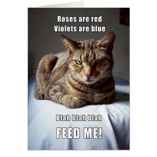 Vanlentine Cat funny poem II Card