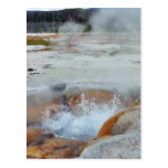 Vapor de los géiseres que hierve Yellowstone Tarjetas Postales
