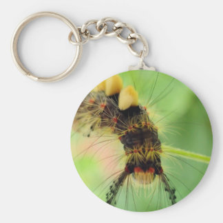 vapourer moth ( caterpillar ) keychain