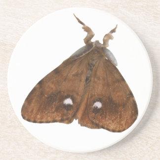 Vapourer Moth Coasters