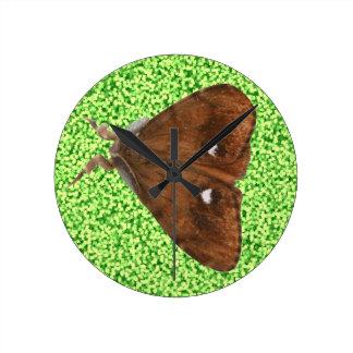 Vapourer Moth Wall Clock