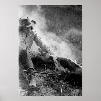 Vaquera Rassling un becerro, los años 30 Póster