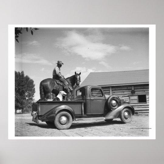 Vaquero con el caballo en un camión póster
