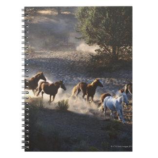 Vaquero con la manada de caballos libro de apuntes