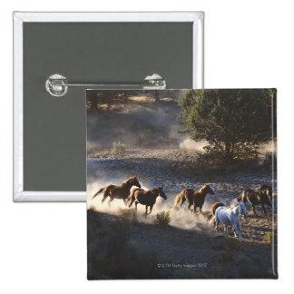 Vaquero con la manada de caballos pin