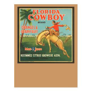 Vaquero de la Florida Postales