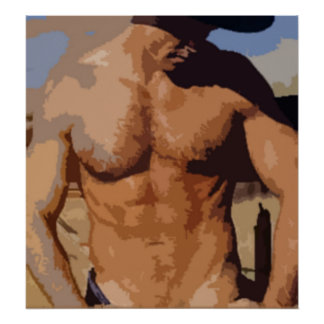 Vaquero del desierto póster