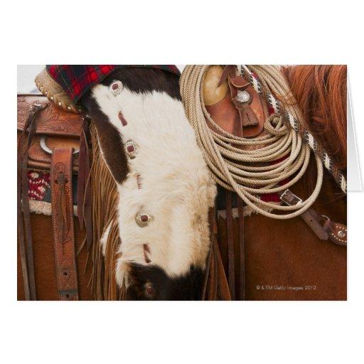 Vaquero en el caballo 2 tarjetas