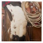 Vaquero en el caballo 2 tejas