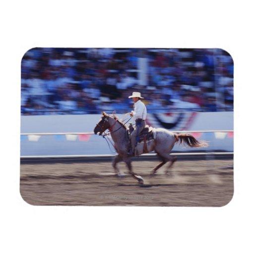 Vaquero en el rodeo imán de vinilo