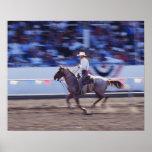 Vaquero en el rodeo posters
