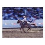 Vaquero en el rodeo tarjeta postal