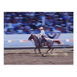 Vaquero en el rodeo postal