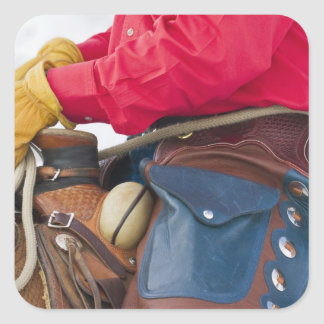 Vaquero en grietas del cuero del caballo que calcomanías cuadradass