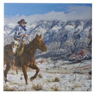 Vaquero en las grietas 2 del cuero del caballo que azulejo cuadrado grande