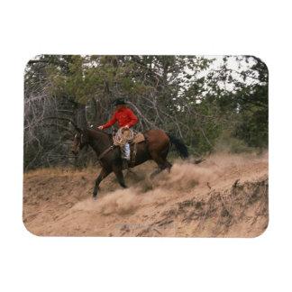 Vaquero que monta cuesta abajo imanes de vinilo