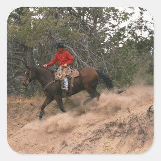 Vaquero que monta cuesta abajo pegatina cuadrada