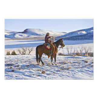 Vaquero que monta un caballo en la gama en fotografia