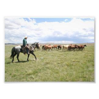 Vaquero que reúne caballos hacia fuera al oeste fotografias