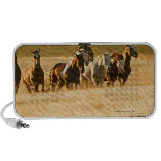 Vaquero que reúne los caballos 2 altavoces