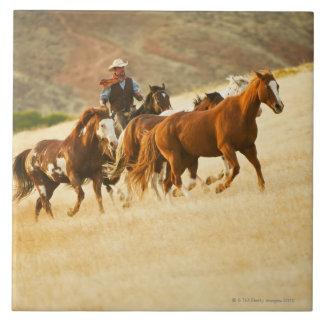 Vaquero que reúne los caballos 3 azulejo cuadrado grande