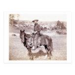 Vaquero solitario postal