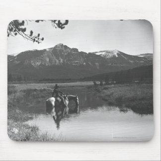Vaquero y caballo en una charca alfombrillas de ratones