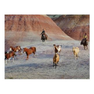 Vaqueros 3 postal