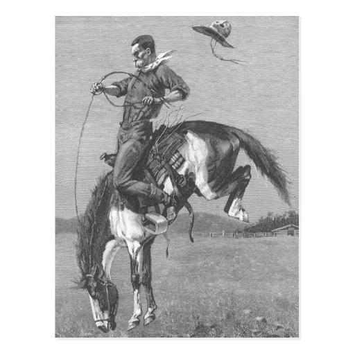 Vaqueros del rodeo del vintage, caballo salvaje postal