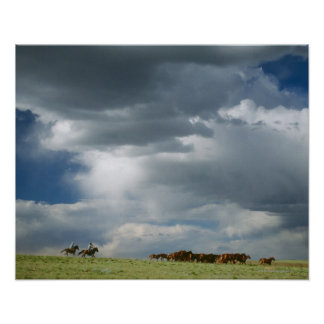 Vaqueros que mueven la manada de caballos posters