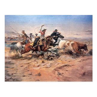 Vaqueros roping un buey, 1897 (aceite en lona) tarjeta postal