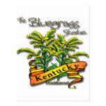 Vara de oro del estado del Bluegrass de Kentucky Postal