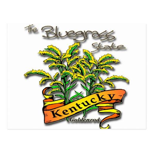 Vara de oro del estado del Bluegrass de Kentucky Tarjetas Postales
