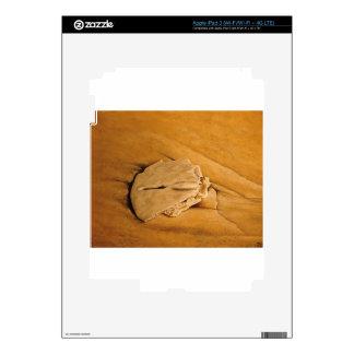 vare, dólar de arena, ondas, arena iPad 3 skins
