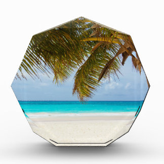 vare el mar tropical de la arena de la isla del