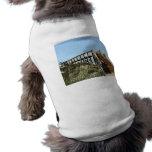 Vare el paseo marítimo con el chica, blas del san  camisetas de perrito